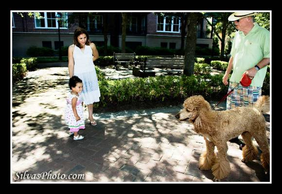Girl meets Poodle Dog