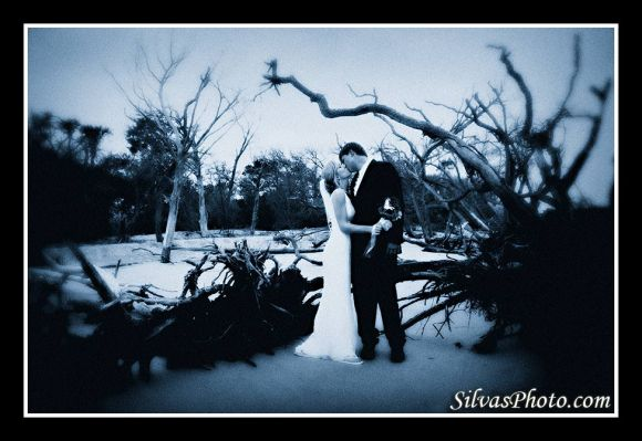 Brian Silvas - Tree Branches Bride and groom